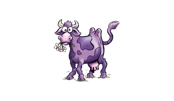 purple_cow